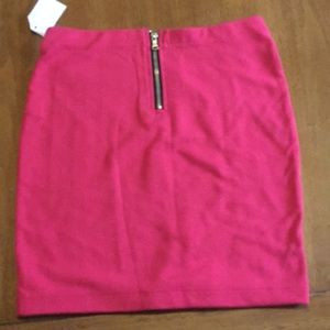 Charlotte Russe Skirts - Pink and black stripe skirt